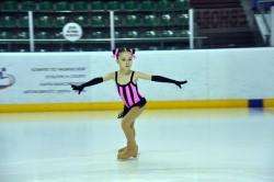 Где покататься на коньках и поиграть в хоккей в Артёме?