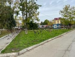 В парке на 17 км работают озеленители