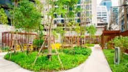 Карманный парк в Бангкоке на Рамы IV