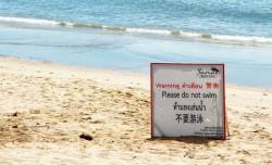 Хуа Хин разворачивает акустические сети против акул