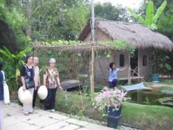 Парк Vietnam at Glance снова открылся