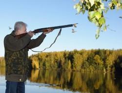 Выдачу охотничьих билетов профессионалам могут упростить