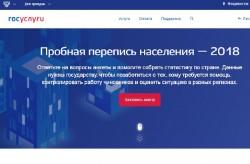 Электронная перепись населения впервые проходит в Приморье