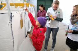 Первый пункт по раздельному сбору мусора открыли в Приморье
