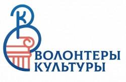 Приморские волонтеры борются за победу во всероссийском конкурсе «Доброволец России – 2020»