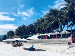Paradise Resort предлагает VIP-зону на Зоклете